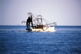 Shrimping Boat on the Water